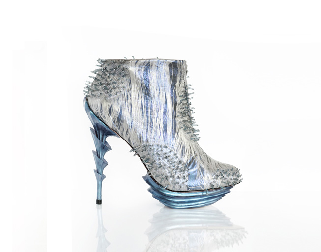 anastacia radevich dream shoes