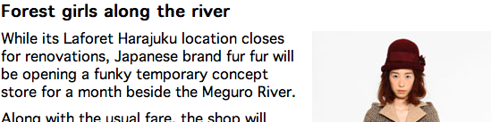 style wise fur fur