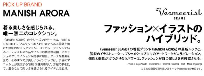vermeerist-beams-2