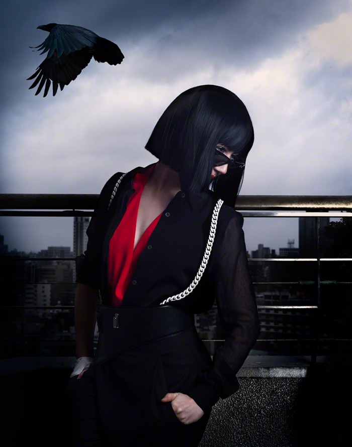 mm623-Misha-sky-raven-web-©-Celia-Humphries