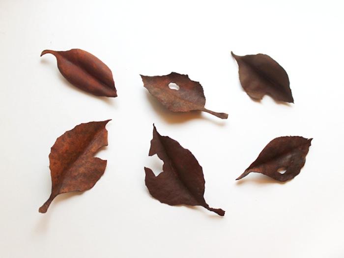 レザーブローチ【fallen leaves】
