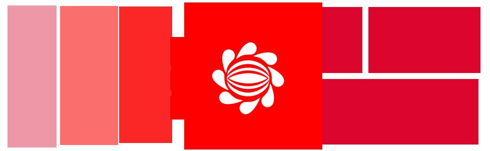 tokyo fashion diaries logo